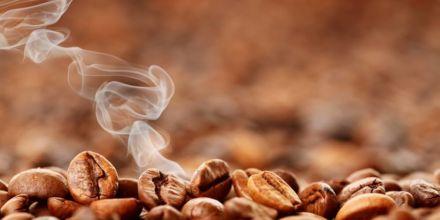 Kaffeebohnen frisch geröstet dampf