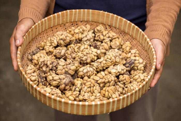Kopi Luwak Kaffee in Schale