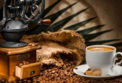 elefanten kaffee echter luxuskaffee roast market magazin. Black Bedroom Furniture Sets. Home Design Ideas