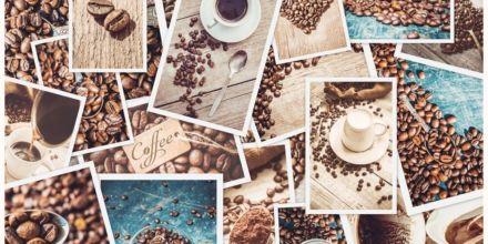 Kaffeebohnenklassifizierung
