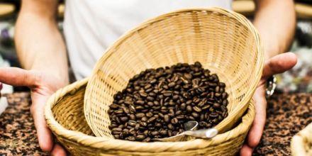 Kaffeeveredelung Kaffeebohnen im Korb