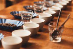 kaffee verkostung wettbewerb
