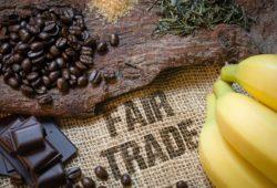 Fair trade kaffeebohnen