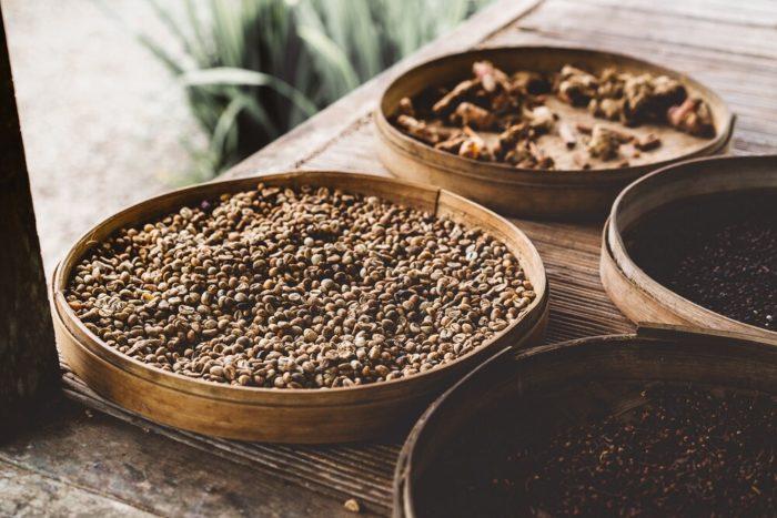 Vermehrung-der-kaffeepflanze-Kaffeebohnen