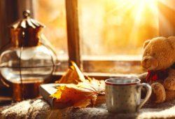 schädlich-oder-gesund-Herbst-teddybär-Kafeetasse