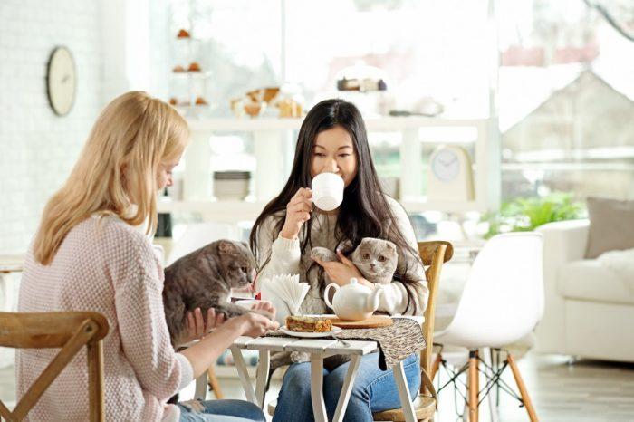 Zwei Frauen sitzen bei Kaffee und Kuchen