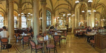 Wiener Kaffeehaus Innenansicht