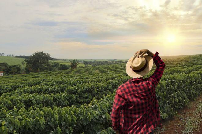 Kaffee-Anbaugebiete: