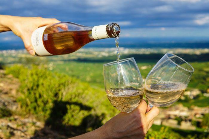 Wein_trinken_in_den_Weinbergen