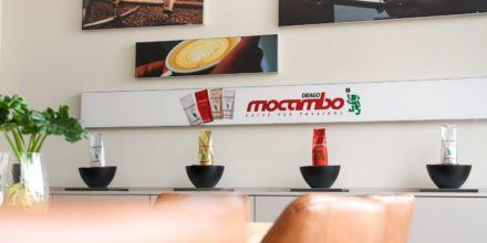 Produktauswahl von Mocambo